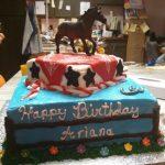 Ice Cream Birthday Cakes Ithaca